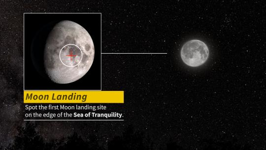 Field Guide to the Night Sky