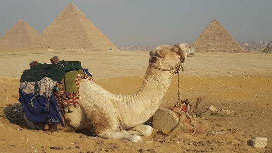 Egypt: China's Gateway to Africa