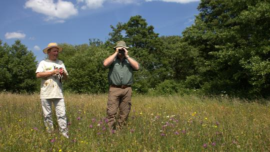 Wild Britain With Ray Mears - E6 - Wild Britain With Ray Mears