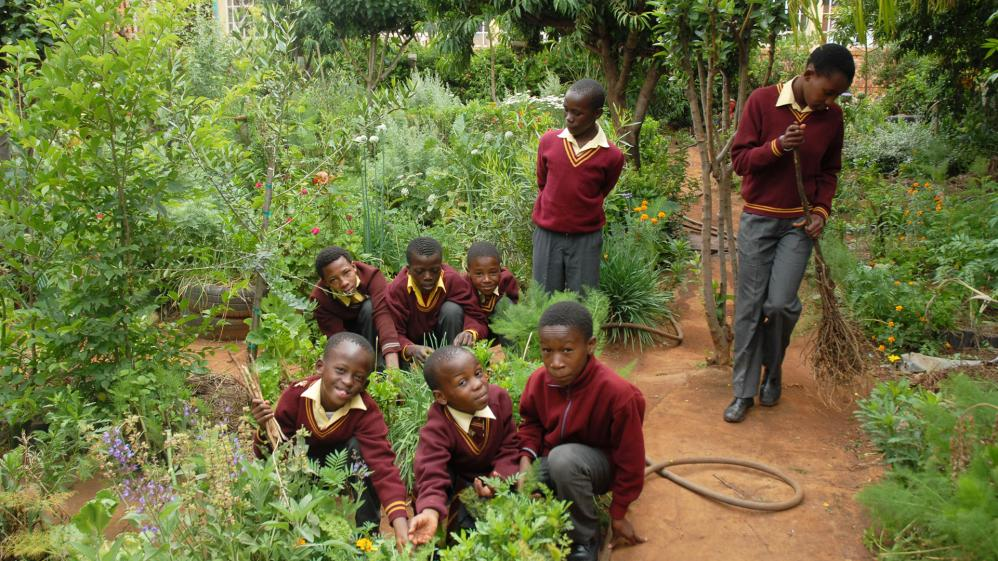 Around the World in 80 Gardens - E8 - South Africa
