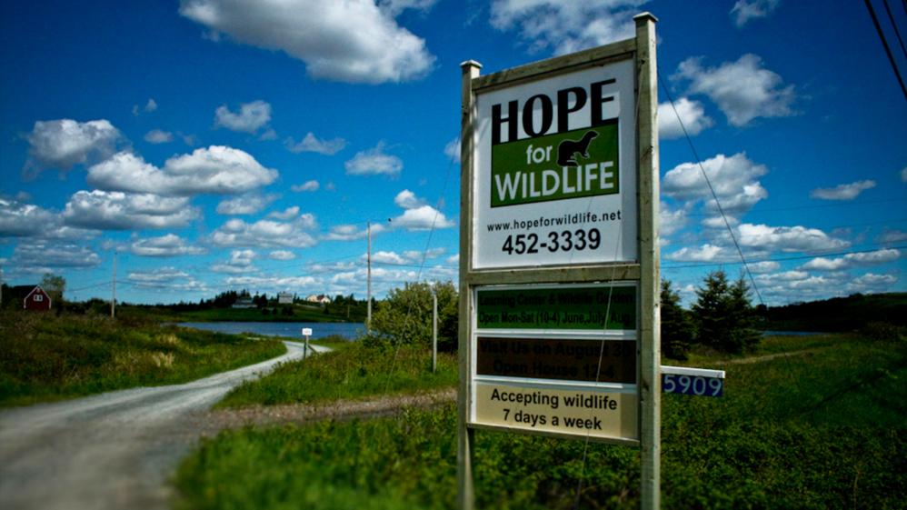 Hope for Wildlife - S1E8 - Outbreak: Part One