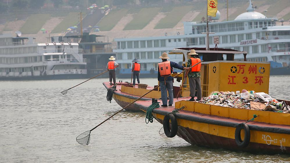 The Yangtze River's Green Sailors