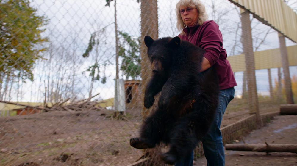 Wild Bear Rescue - E6 - Open Gate