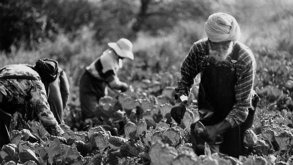 Working People: A History of Labour in British Columbia - E29 - Farmworkers