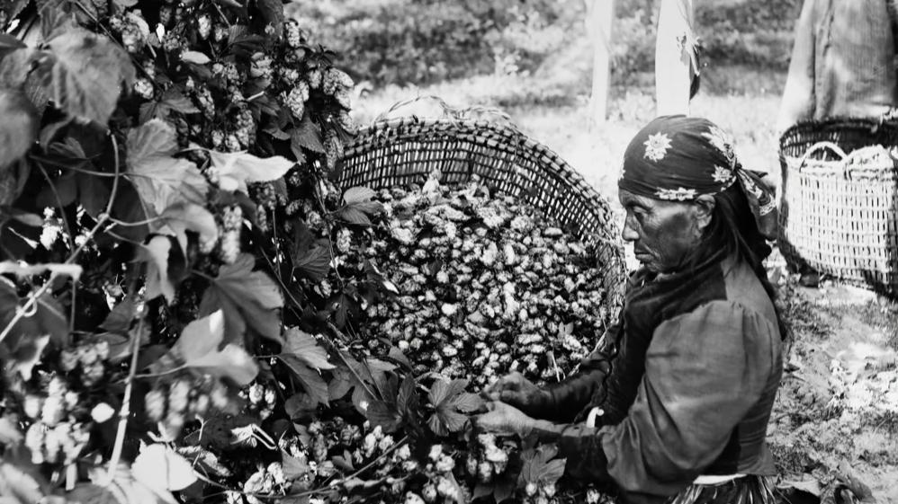 Working People: A History of Labour in British Columbia - E1 - The First Economies