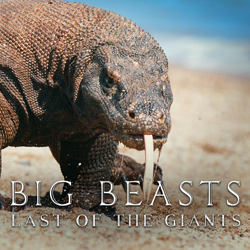 Big Beasts: Last of the Giants