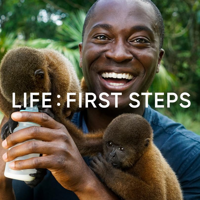 Life: First Steps