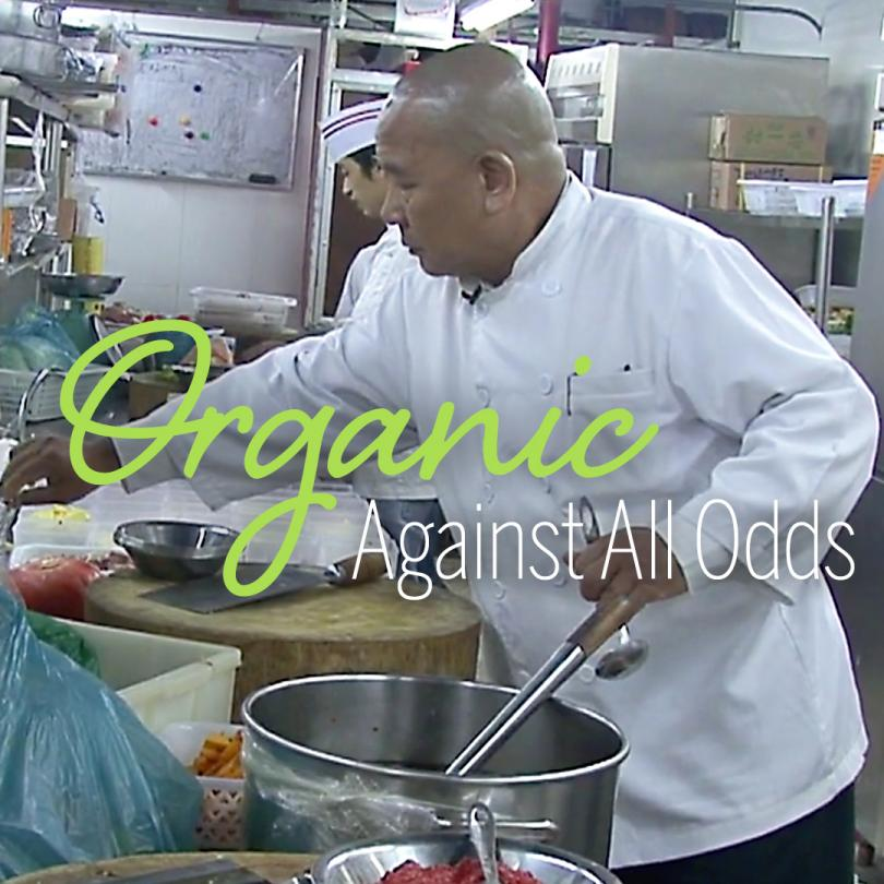 Organic, Against All Odds